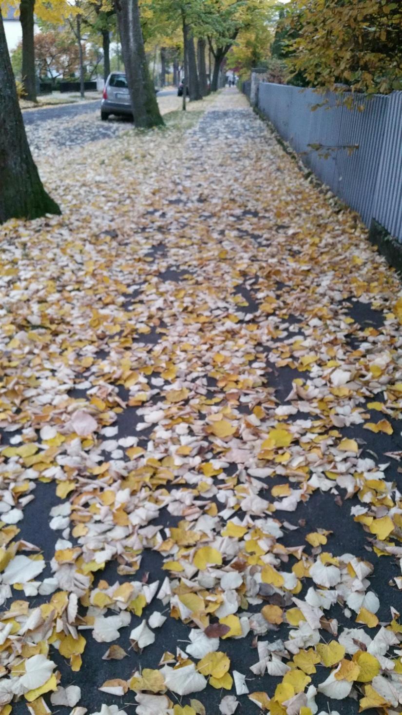 Was war das für 1 Oktober? – Blog36 blickt fasziniertzurück